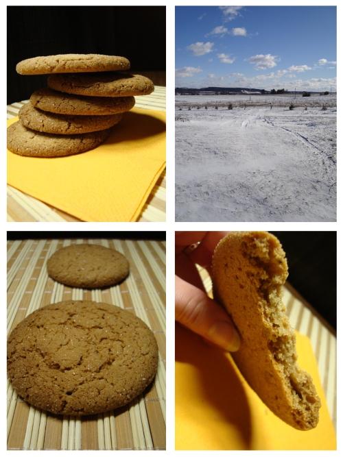 Imbieriniai sausainiai su cukraus plutele (1)